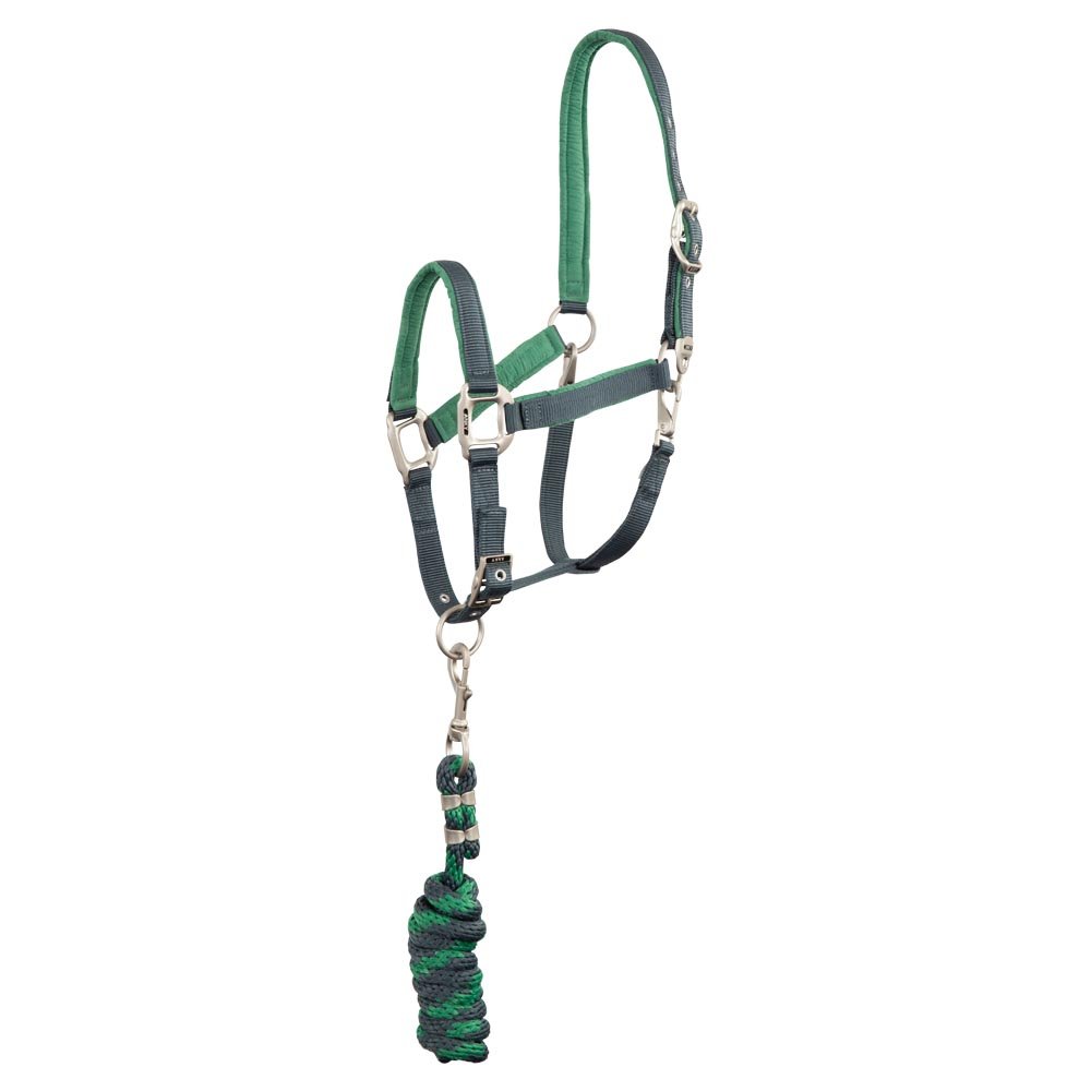 The classic ANKY® halter combines style and functionality. The halter is lined with a soft touch suede in a contrast colour at the noseband, head piece and cheek pieces. This material provides a soft and supple feel. The halter can be unclipped at either side for grooming. Comes with matching lead.